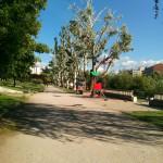 Doogee_Valencia_DG800 Paseo 002